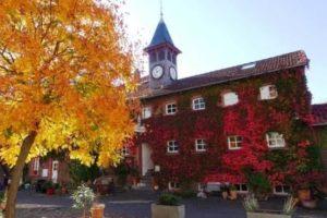 Herbstsbild.N.K.1